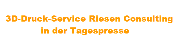 Tagespresse Riesen Consulting